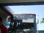 Afula Bus Chag Sameach