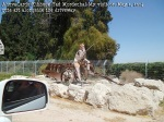 Kibbutz Yad Mordechai May 2, 2014 Cute art alongside the driveway -1