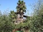 IMG_0223 House of Eli Aviv -2