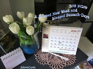 Shavua Tov - Pessach 2016 wiße Tulpen  Kopie